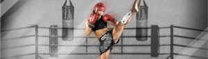 Kickboxing / Thaiboxing / Muay thai