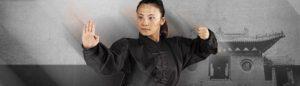 Kung fu / Wu shu / Tai chi / Qi gong